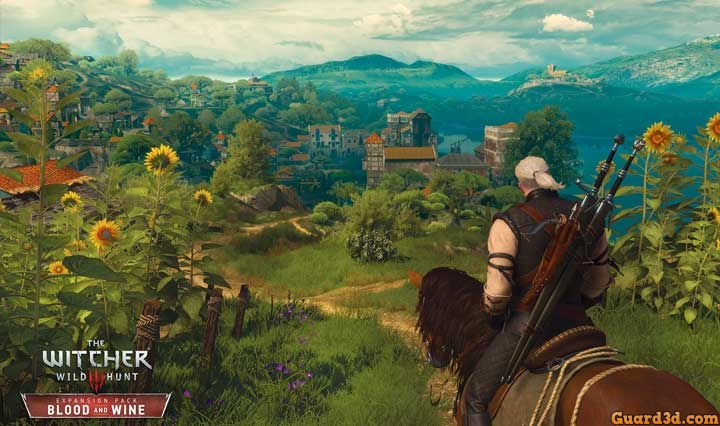 گرافیک-بازی-The-Witcher-3-Wild-Hunt---Blood-and-Wine